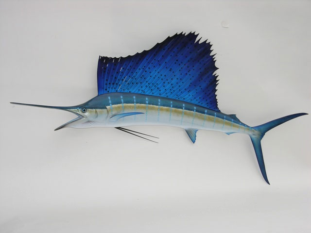 Atlantic Sailfish Replica