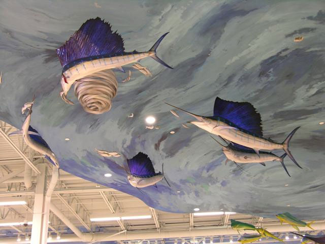 Atlantic Sailfish Mounts