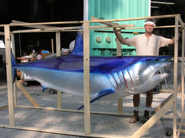 Mako Shark Taxidermy