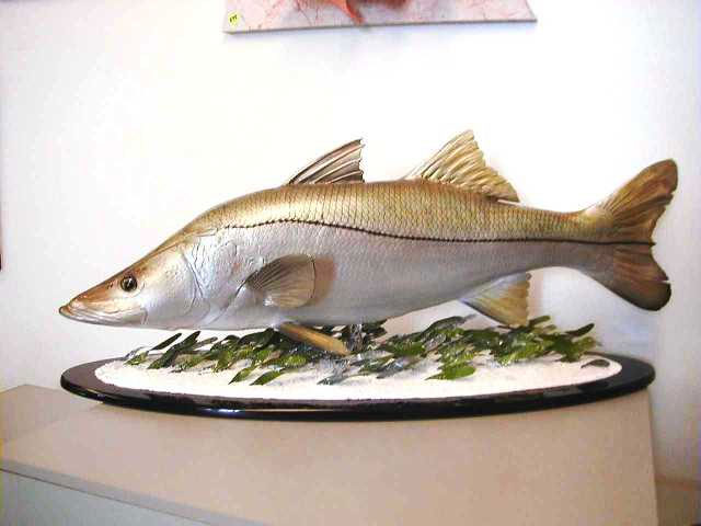 Snook Replica