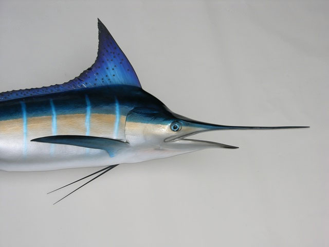 Striped Marlin Mount