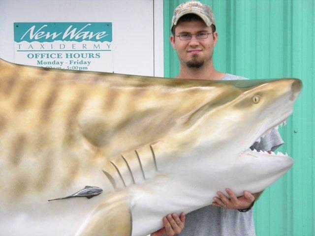 Tiger Shark Mounts