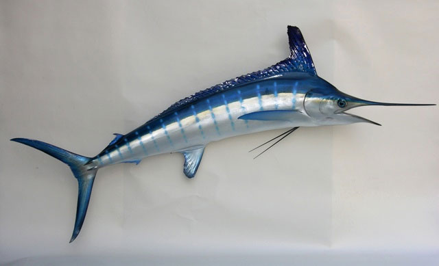 White Marlin Mount