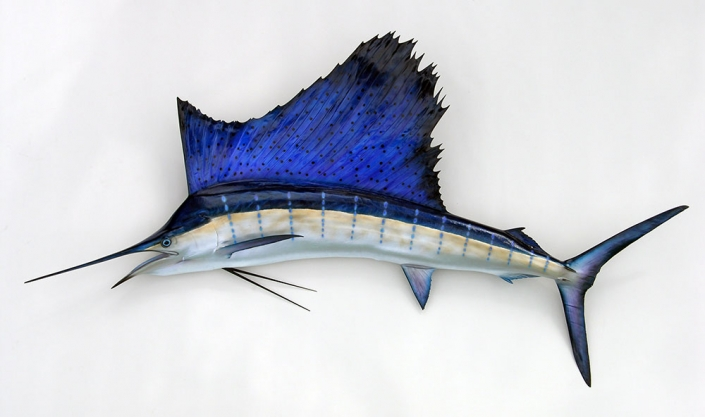 Pacific Sailfish Mount
