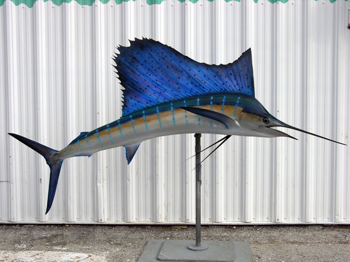 Pacific Sailfish Replica