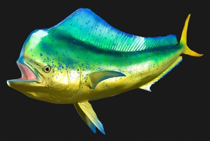 Dolphin Replica Mount