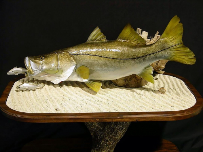 Snook Pedestal Mount