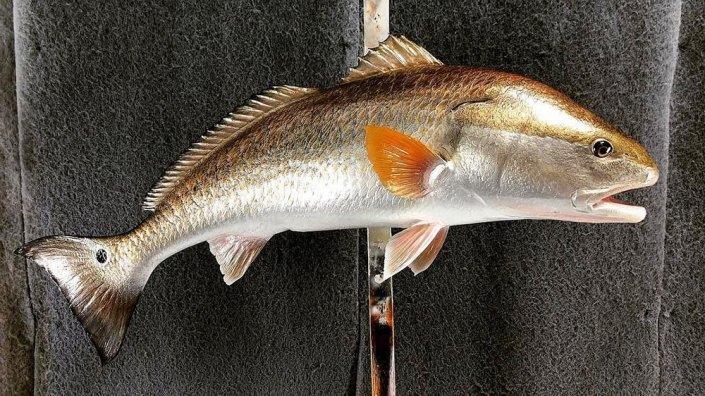 Redfish Replica Mount