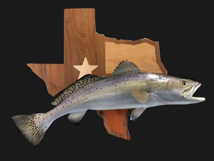 Texas Speckled Trout Replica Mount