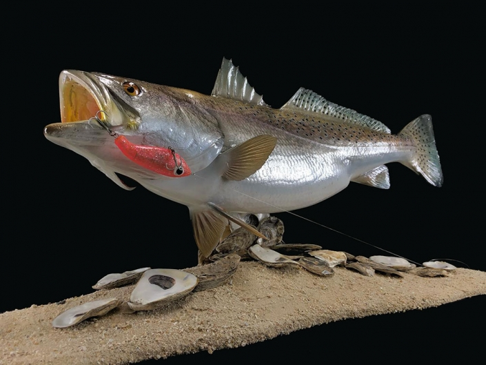Speckled Trout Pedestal Mount